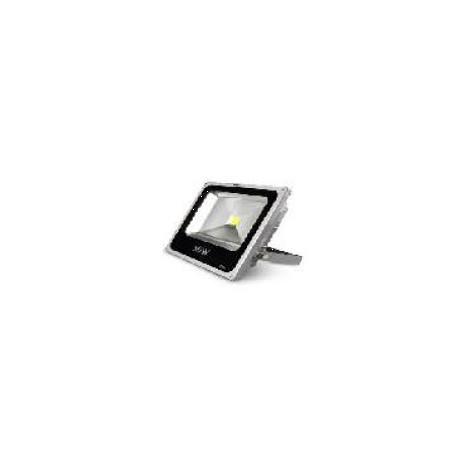 FOCO LED EXTERIOR COB 30W